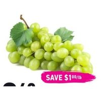 Fresh Green Moscato Grapes