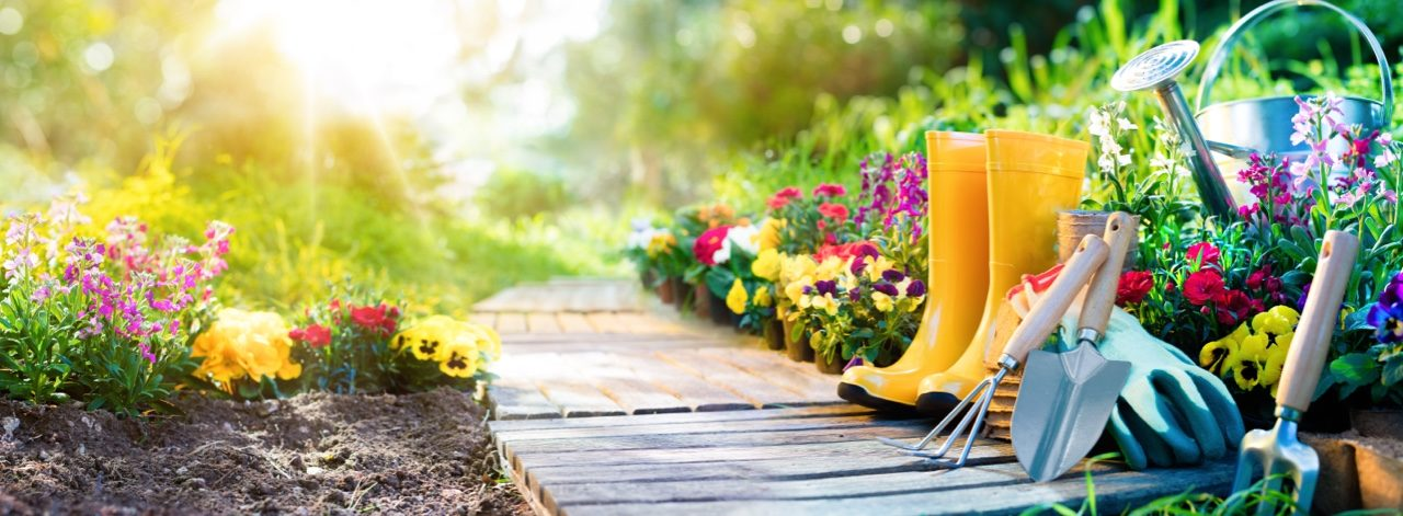 The Best Gardening Supplies for Your Home