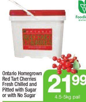 Highland Farms: Ontario Homegrown Red Tart Cherries Fresh